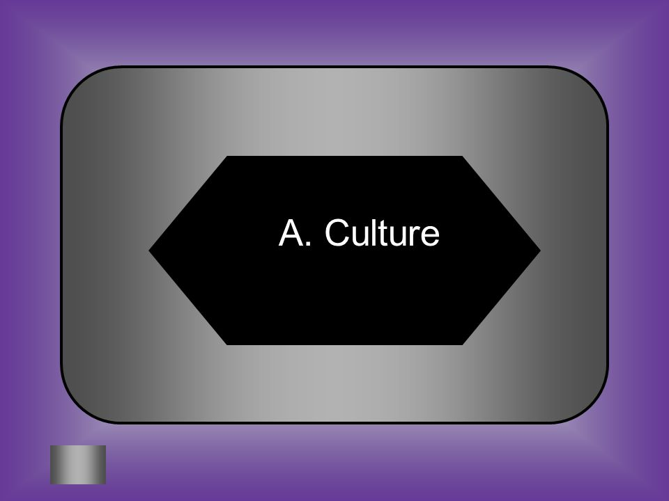 A:B: Culture Cotoy #8 The way groups of people express and conduct themselves is called C:D: ConfederacyAgriculture