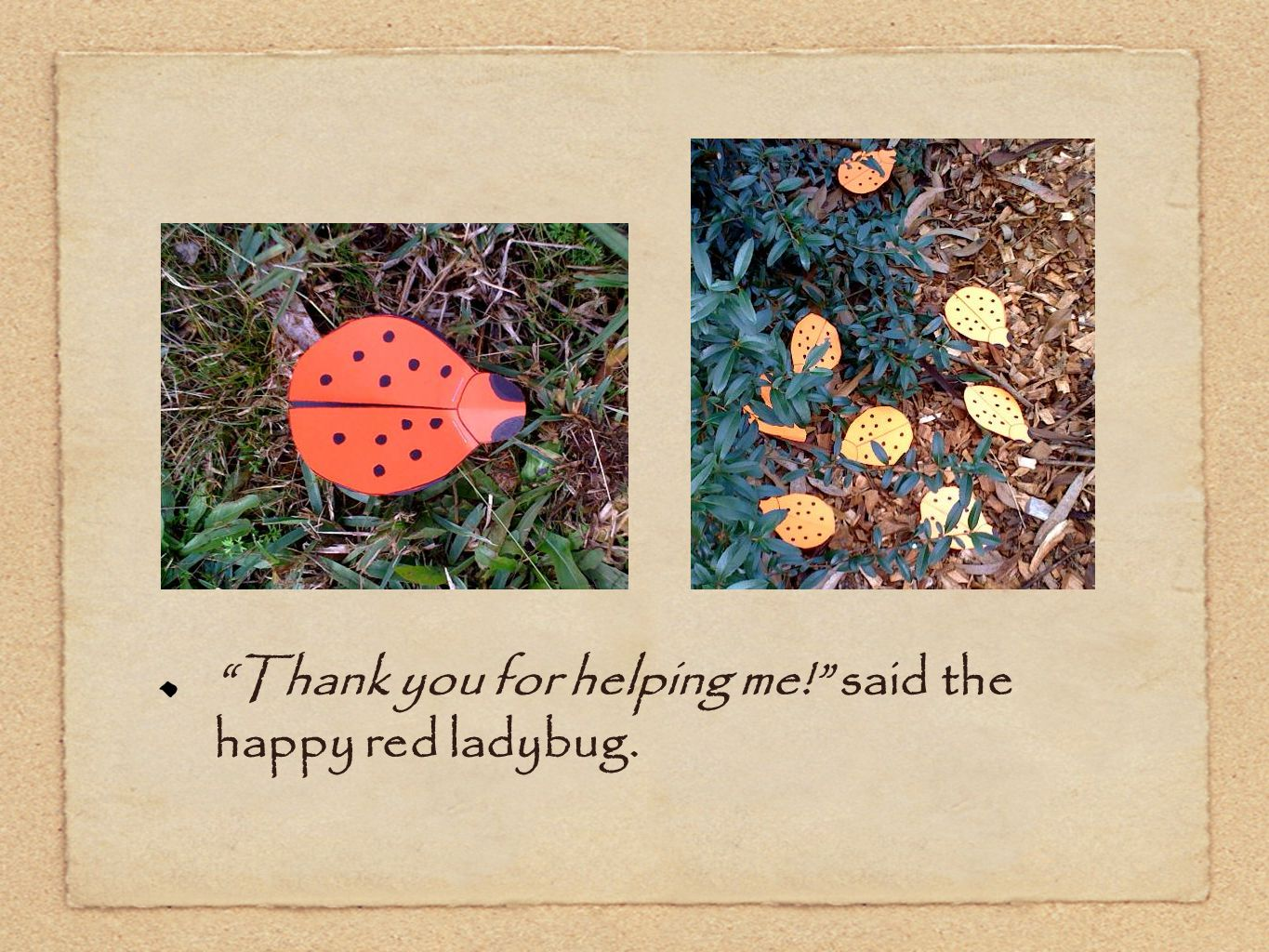 x Thank you for helping me! said the happy red ladybug.