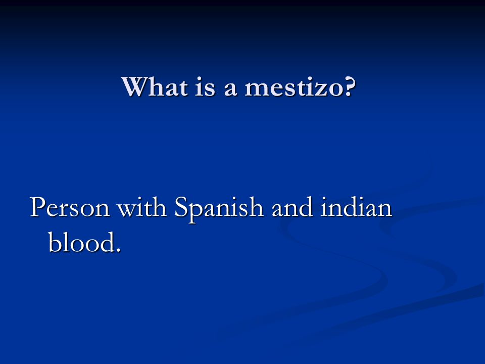 What is a mestizo Person with Spanish and indian blood.