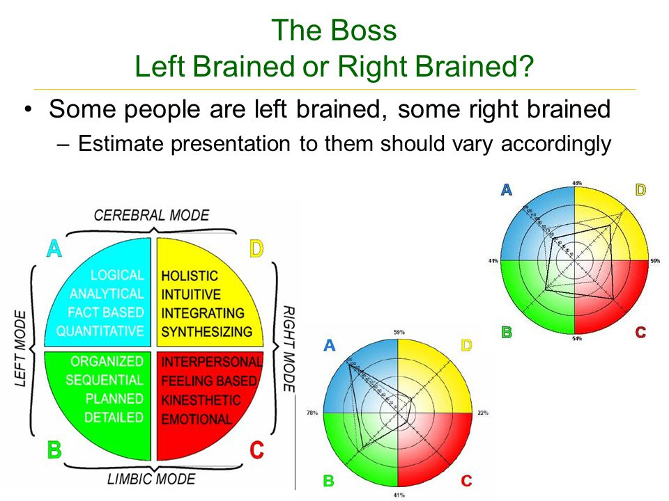 The Boss Left Brained or Right Brained.