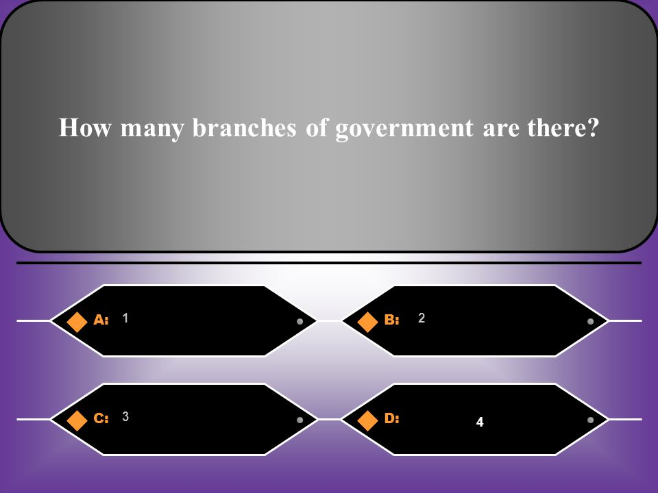 How many branches of government are there? A:B: 12 C:D: 3 4