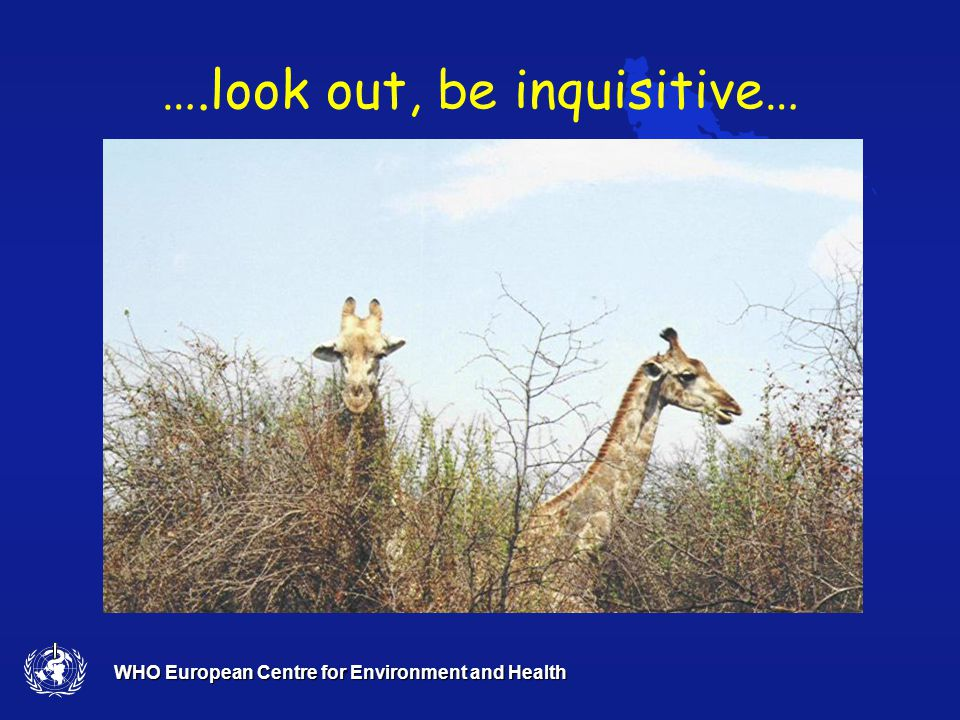 WHO European Centre for Environment and Health We must reach….