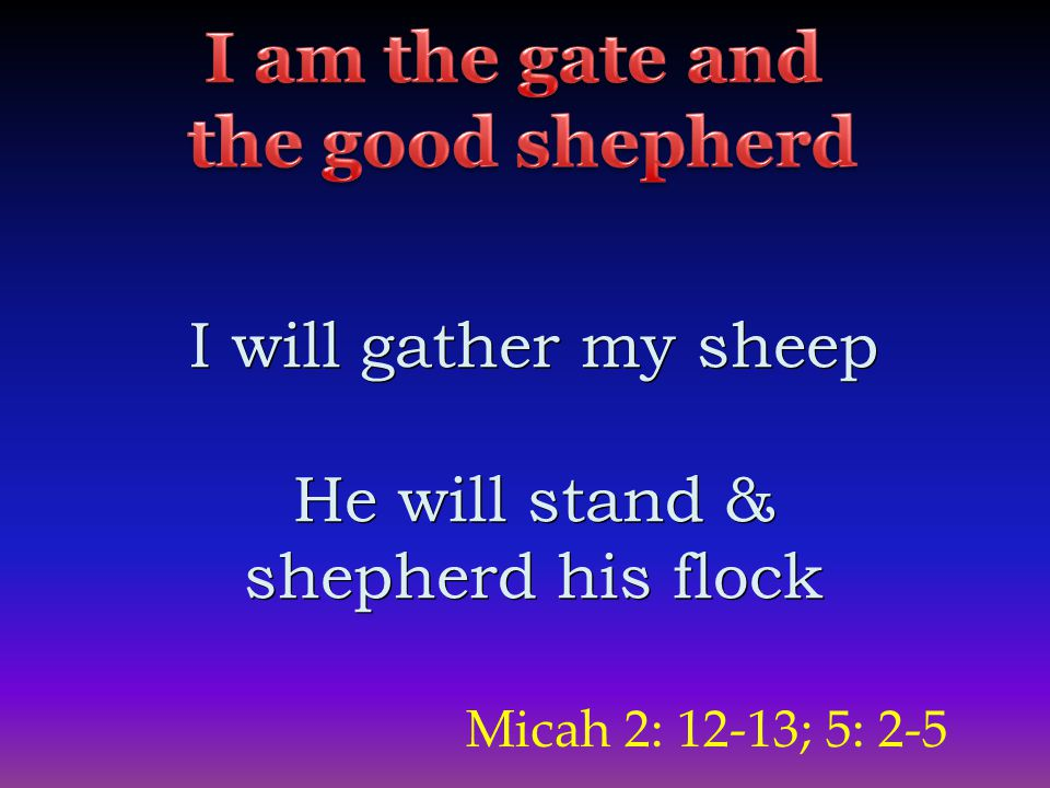 Micah 2: 12-13; 5: 2-5 I will gather my sheep He will stand & shepherd his flock I will gather my sheep He will stand & shepherd his flock
