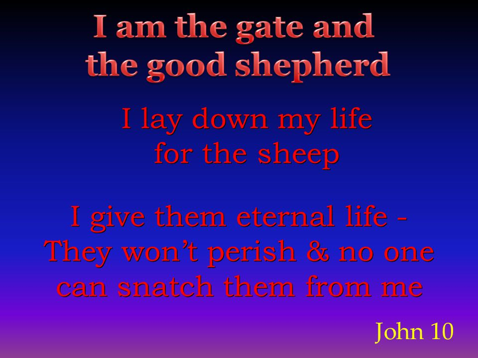 John 10 I lay down my life for the sheep I lay down my life for the sheep I give them eternal life - They won't perish & no one can snatch them from me I give them eternal life - They won't perish & no one can snatch them from me