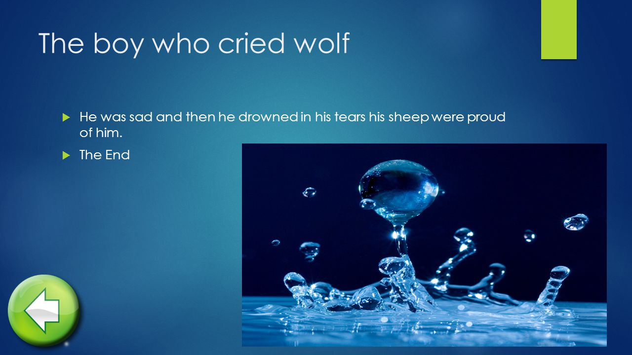 The boy who cried wolf  He was sad and then he drowned in his tears his sheep were proud of him.
