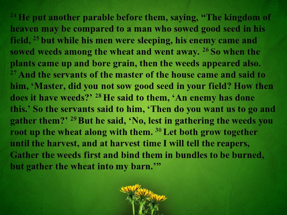 24 He put another parable before them, saying, The kingdom of heaven may be compared to a man who sowed good seed in his field, 25 but while his men were sleeping, his enemy came and sowed weeds among the wheat and went away.