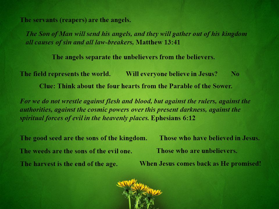The field represents the world.The good seed are the sons of the kingdom.