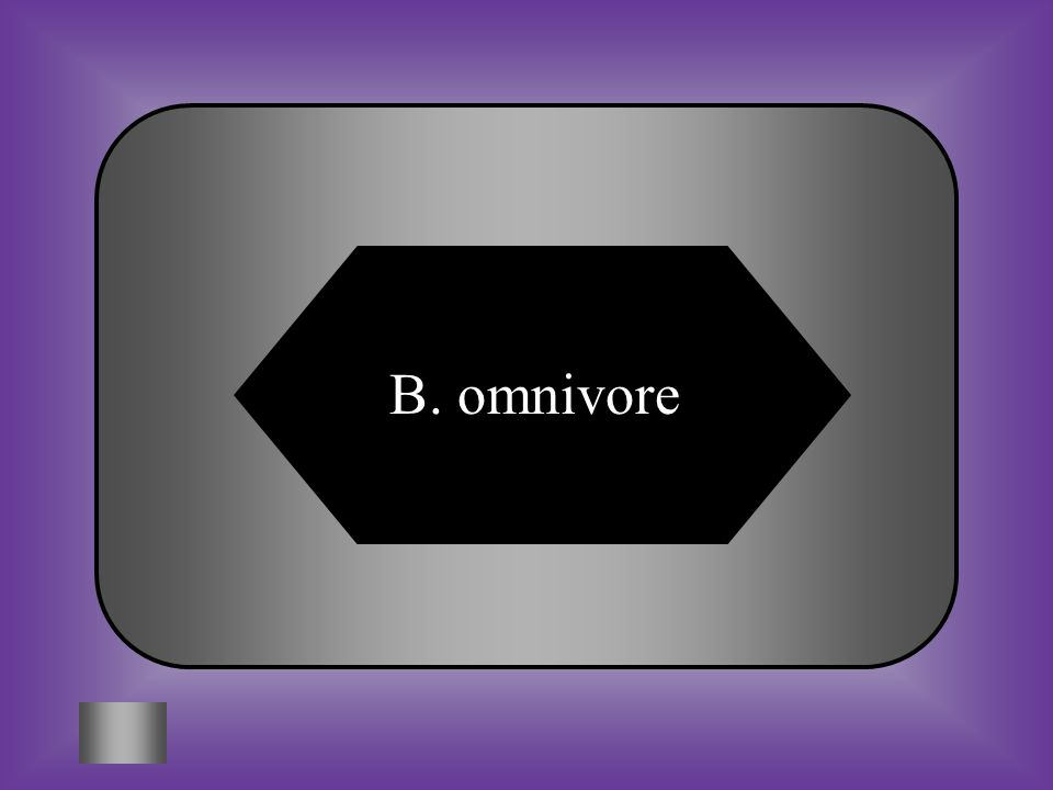 A:B: herbivoreomnivore C:D: carnivoreecoviore #10 Consumers that eat both plants and animals. Example: Mouse
