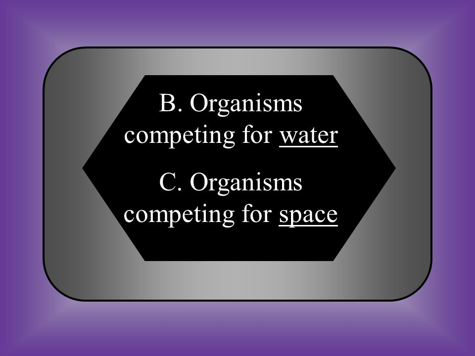 A:B: Organisms competing for prey Organisms competing for water C:D: Organisms competing for space None of these #27 Give an example of organisms competing for an abiotic factor in an ecosystem.