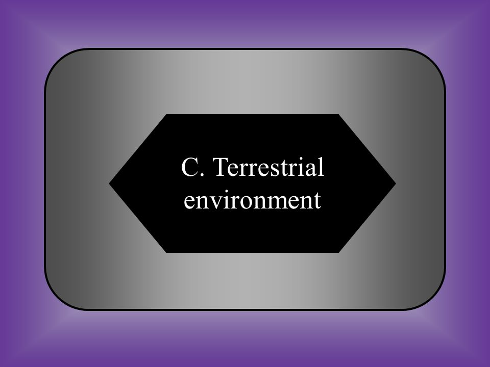 A:B: Space environmentMarine environment C:D: Terrestrial environmentNone of these #32 The Earth s land area, including its manmade and natural surface and sub-surface features.
