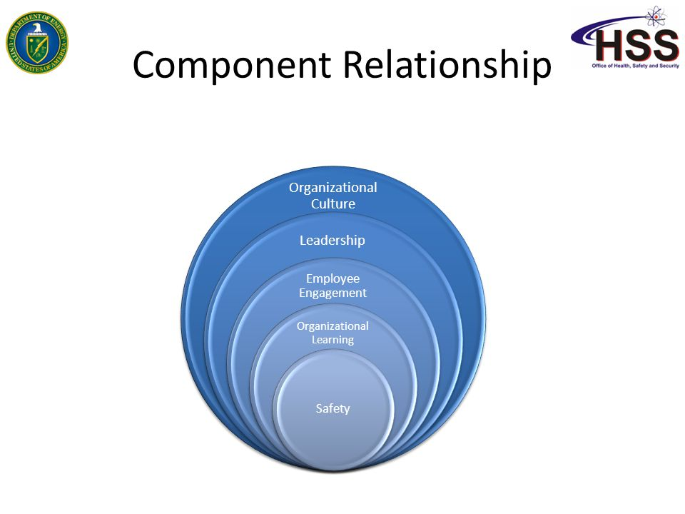 Component Relationship Organizational Culture Leadership Employee Engagement Organizational Learning Safety