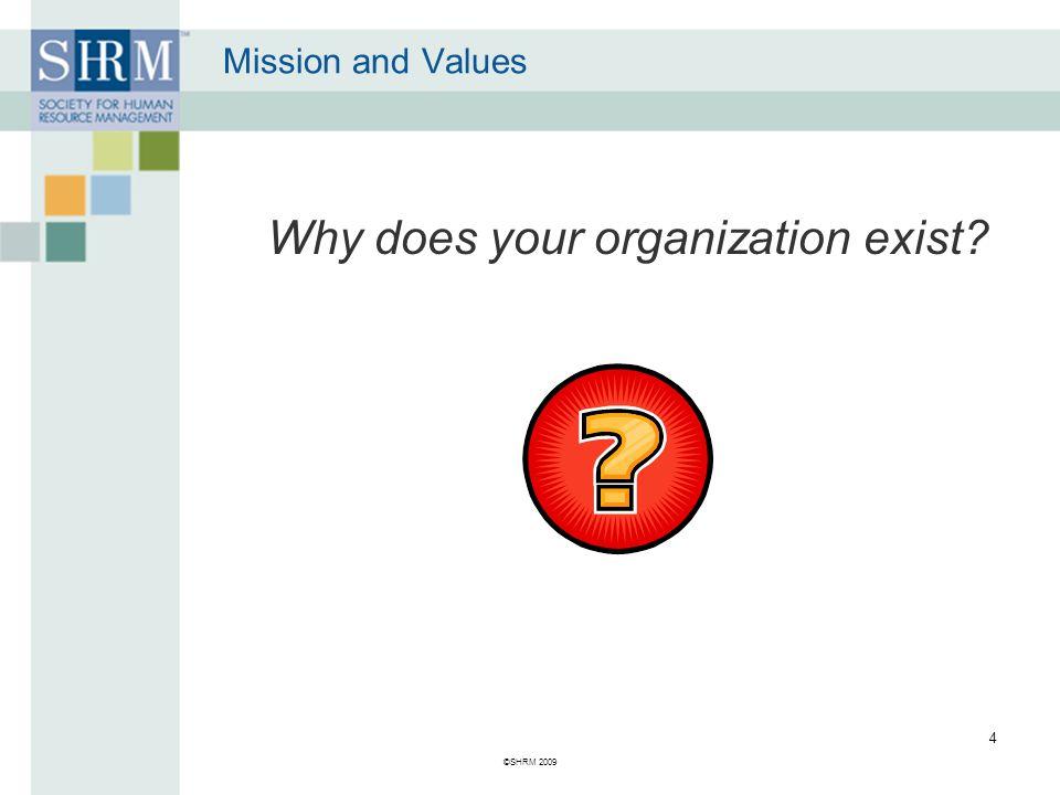 A Mission Statement Defines the organization's purpose.