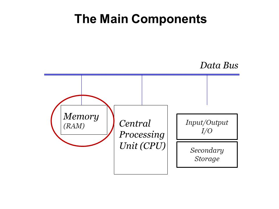 The Main Components Data Bus Memory (RAM) Central Processing Unit (CPU) Secondary Storage Input/Output I/O