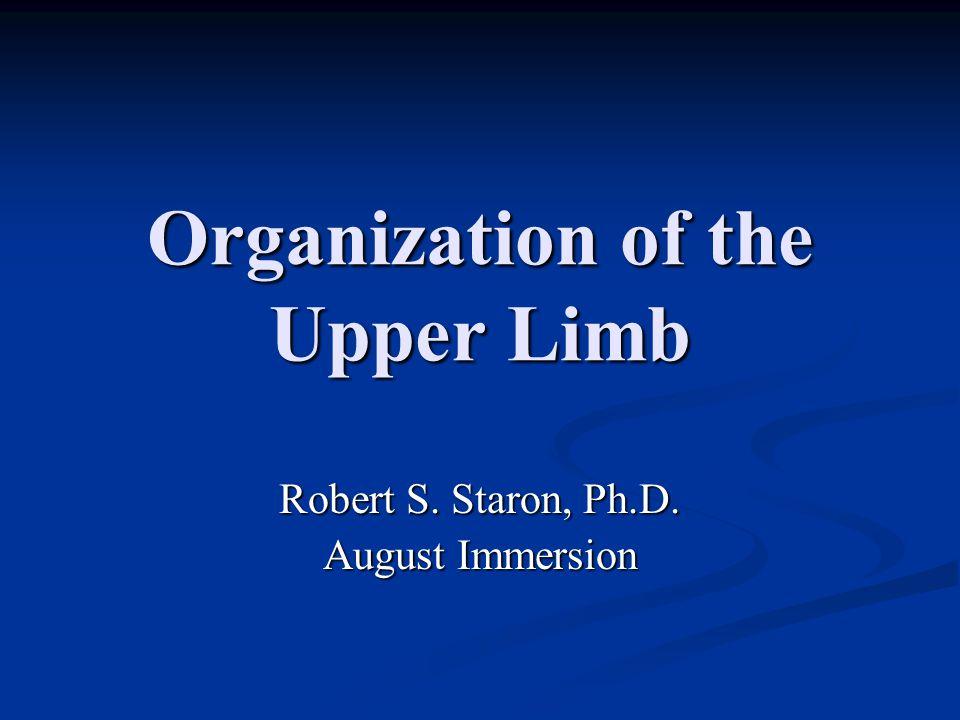 Organization of the Upper Limb Robert S. Staron, Ph.D. August Immersion