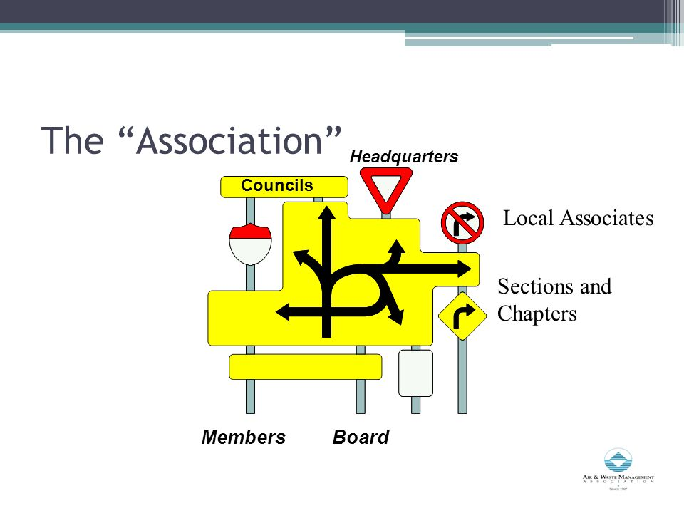 The Association Headquarters BoardMembers Councils Sections and Chapters Local Associates