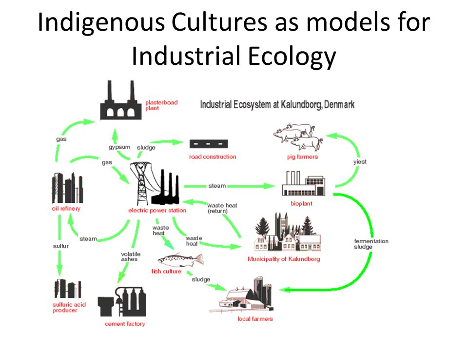 Indigenous Cultures as models for Industrial Ecology