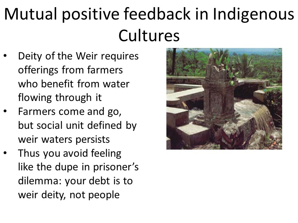 Mutual positive feedback in Indigenous Cultures Deity of the Weir requires offerings from farmers who benefit from water flowing through it Farmers come and go, but social unit defined by weir waters persists Thus you avoid feeling like the dupe in prisoner's dilemma: your debt is to weir deity, not people