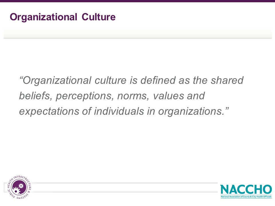 """Organizational culture is defined as the shared beliefs, perceptions, norms, values and expectations of individuals in organizations."" Organizational"
