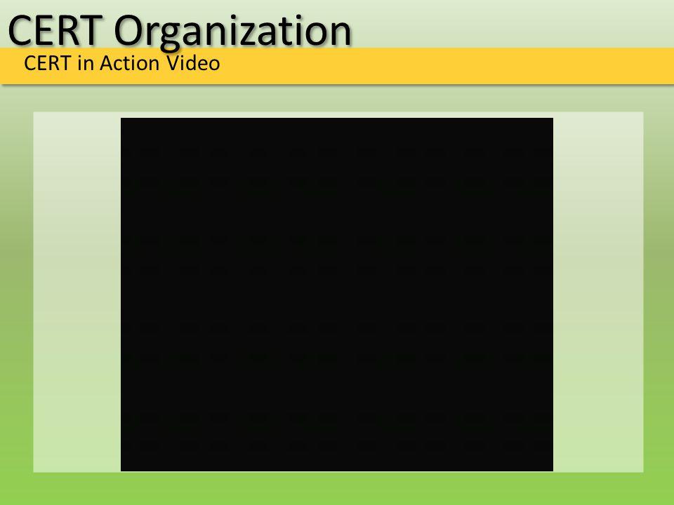 CERT Organization CERT in Action Video