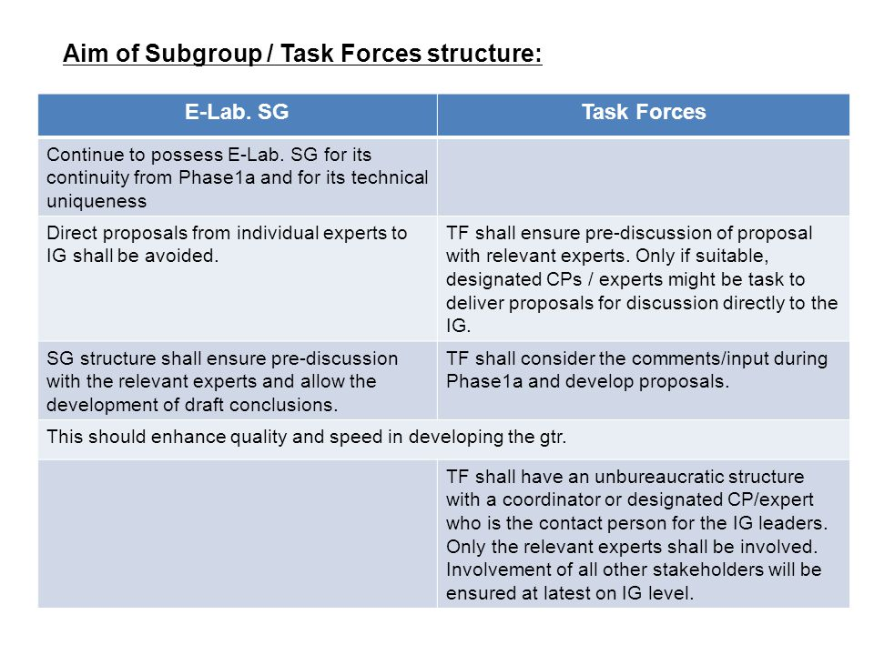Aim of Subgroup / Task Forces structure: E-Lab. SGTask Forces Continue to possess E-Lab.