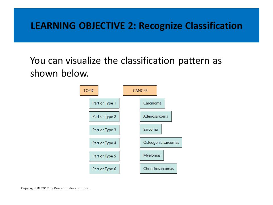 LEARNING OBJECTIVE 2: Recognize Classification You can visualize the classification pattern as shown below. Copyright © 2012 by Pearson Education, Inc