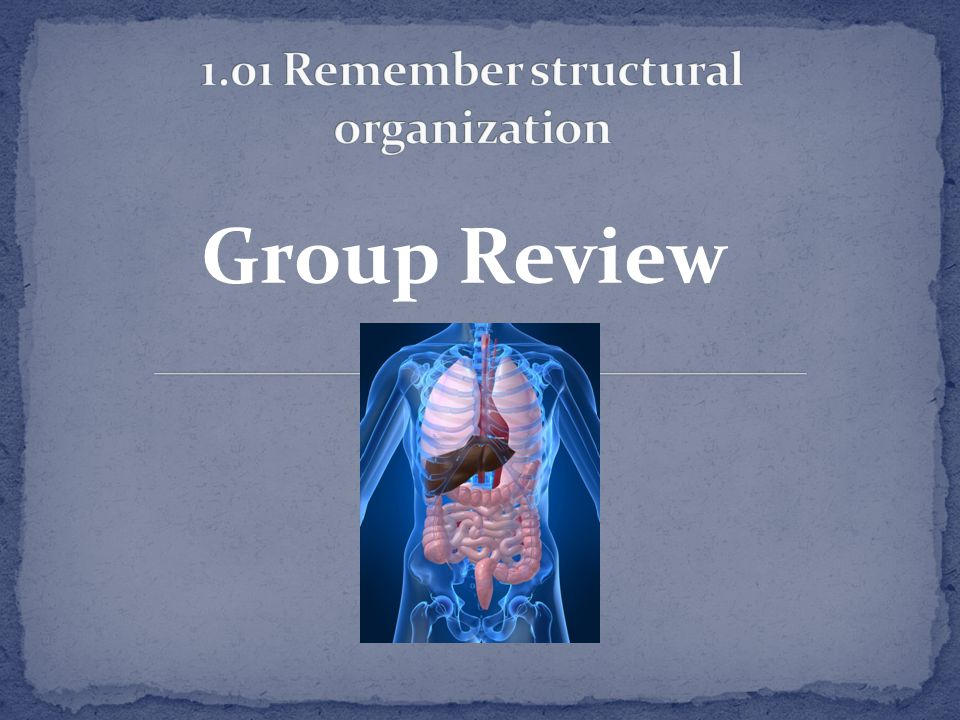 35 1.01 Remember structural organization
