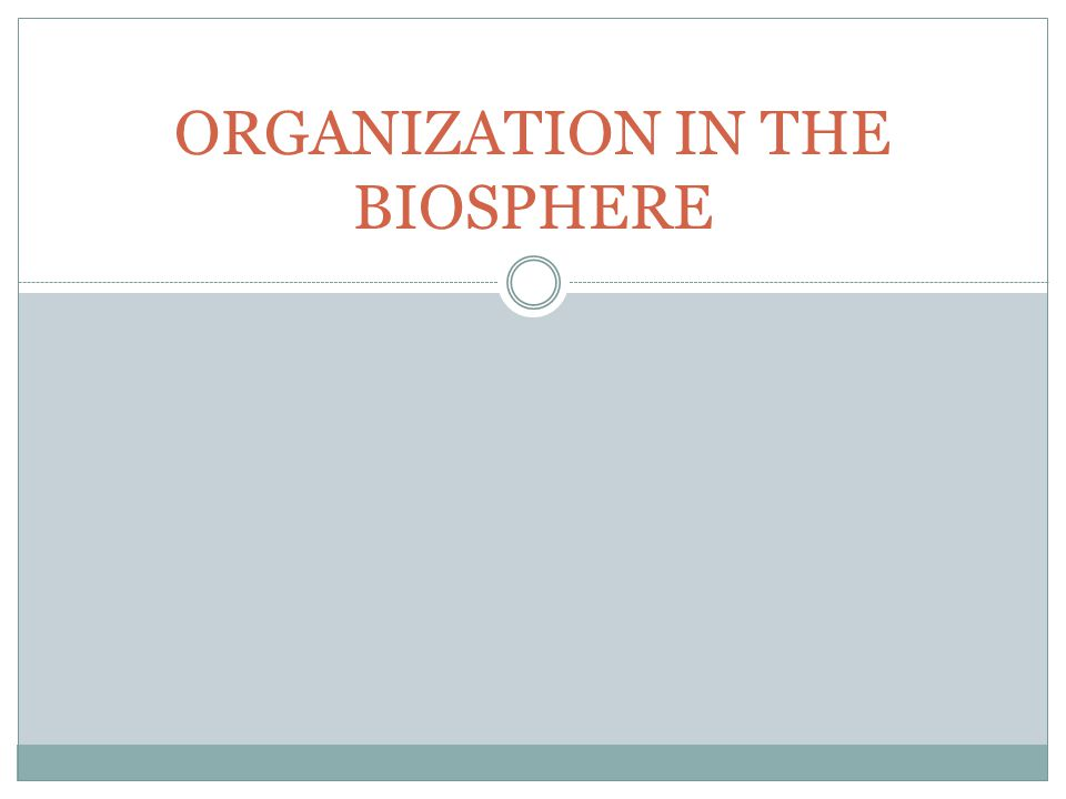 ORGANIZATION IN THE BIOSPHERE