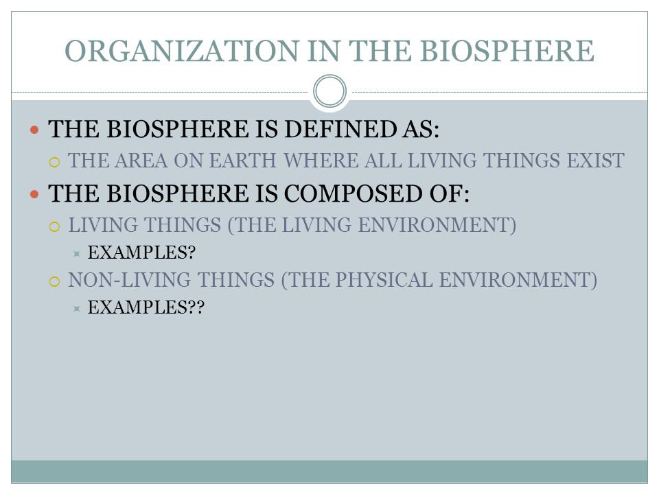 ORGANIZATION IN THE BIOSPHERE WHERE ARE THE DECOMPOSERS IN ALL OF THIS.