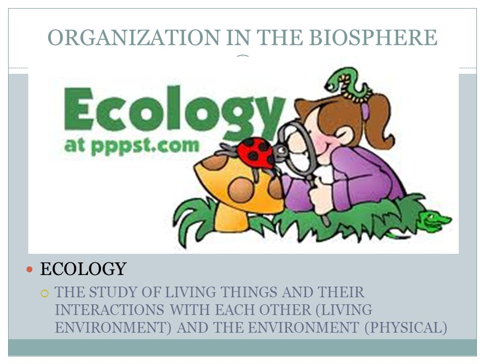 ECOLOGY  THE STUDY OF LIVING THINGS AND THEIR INTERACTIONS WITH EACH OTHER (LIVING ENVIRONMENT) AND THE ENVIRONMENT (PHYSICAL)