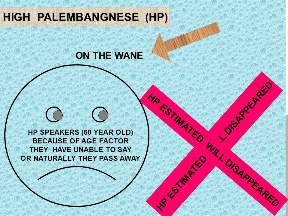 HIGH PALEMBANGNESE (HP). ON THE WANE HP ESTIMATED WILL DISAPPEARED HP SPEAKERS (60 YEAR OLD) BECAUSE OF AGE FACTOR THEY HAVE UNABLE TO SAY OR NATURALL
