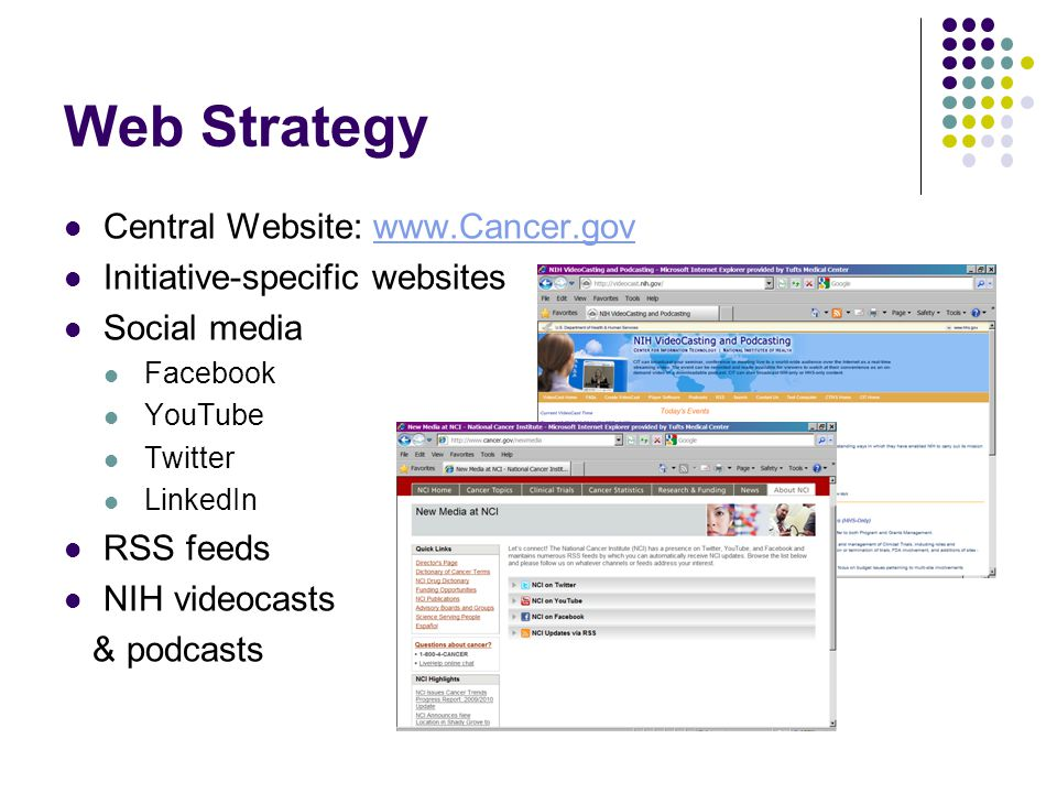 Web Strategy Central Website: www.Cancer.govwww.Cancer.gov Initiative-specific websites Social media Facebook YouTube Twitter LinkedIn RSS feeds NIH videocasts & podcasts