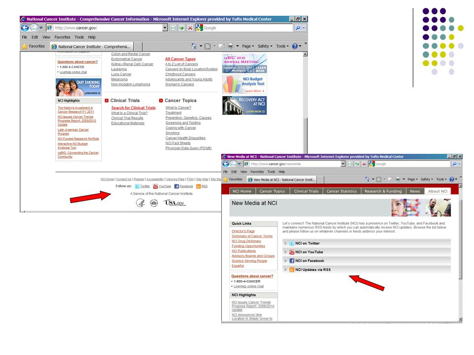 www.LLS.org Website launched in 1997  Updated 2001  Freddie Award finalist Redesign in 2009 (LLS' 60 th Birthday!)  Patient Services  Web-based support tools, Caregiver management tools  Treatment locator, Clinical Trial locator  Disease Information  Information on blood cancers & treatment options  Educational videos, webcasts & print materials  How to Help  Online donations, Online volunteer registration  Advocacy  Advocates Network, 'Toolbox', Legislator finder  Science/Professionals  Grant information, Education programs, PubMed  LLS  About US  Pressroom