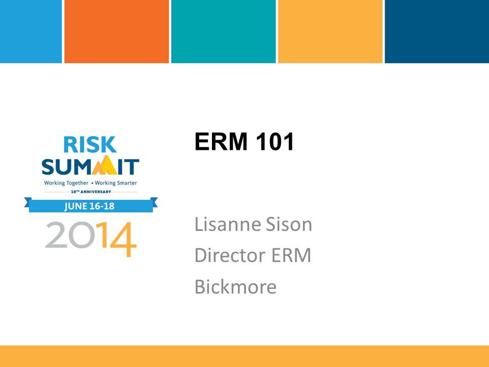 ERM 101 Lisanne Sison Director ERM Bickmore