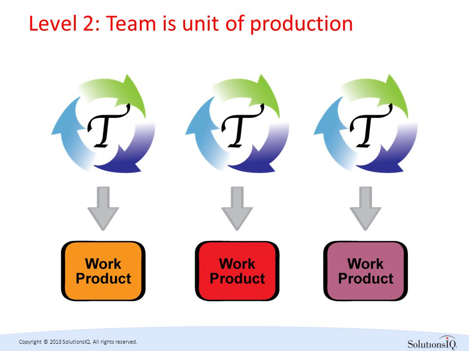 Copyright © 2013 SolutionsIQ. All rights reserved. Level 2: Team is unit of production