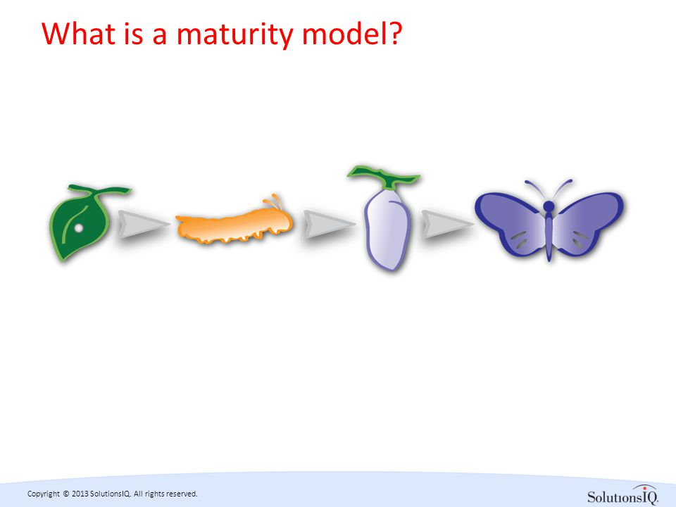 Copyright © 2013 SolutionsIQ. All rights reserved. What is a maturity model?