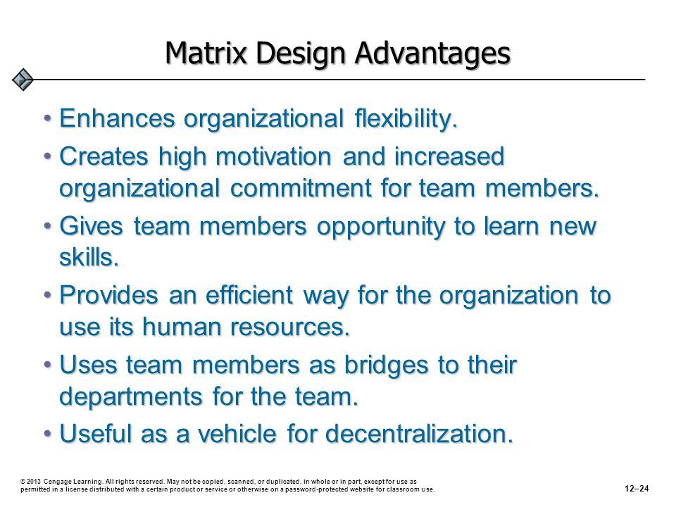 Matrix Design Advantages Enhances organizational flexibility.Enhances organizational flexibility.