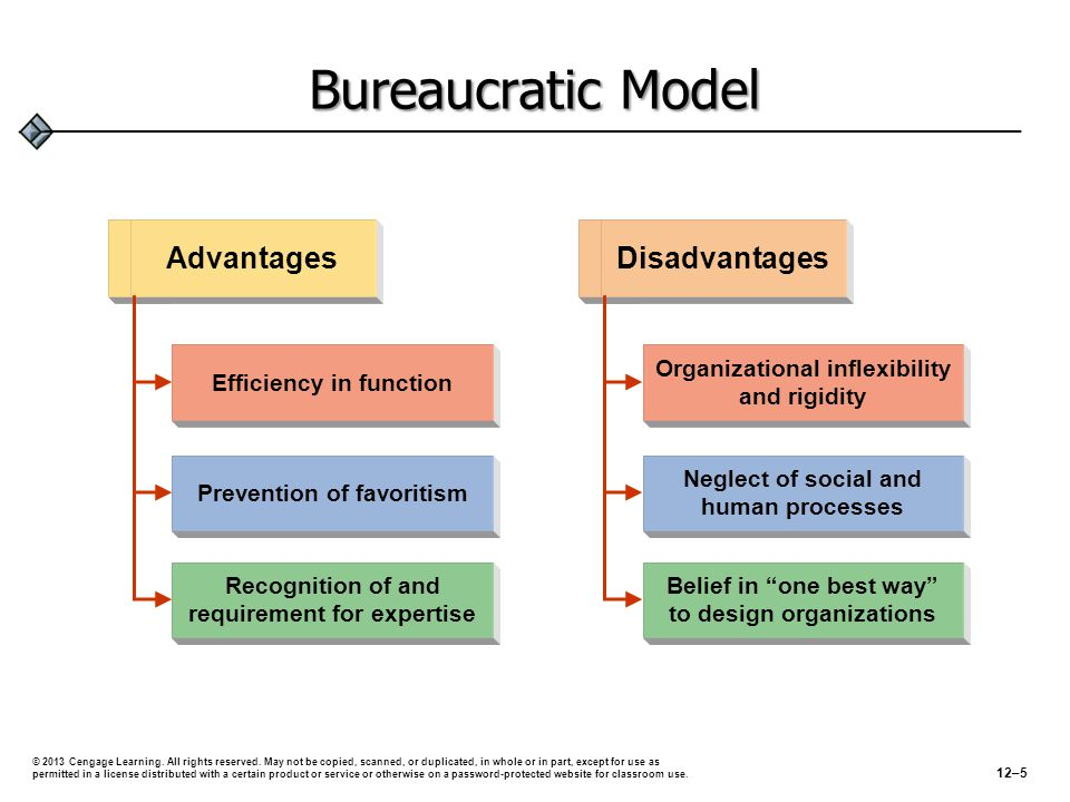 Bureaucratic Model Efficiency in function Prevention of favoritism Recognition of and requirement for expertise Advantages Organizational inflexibility and rigidity Neglect of social and human processes Belief in one best way to design organizations Disadvantages © 2013 Cengage Learning.