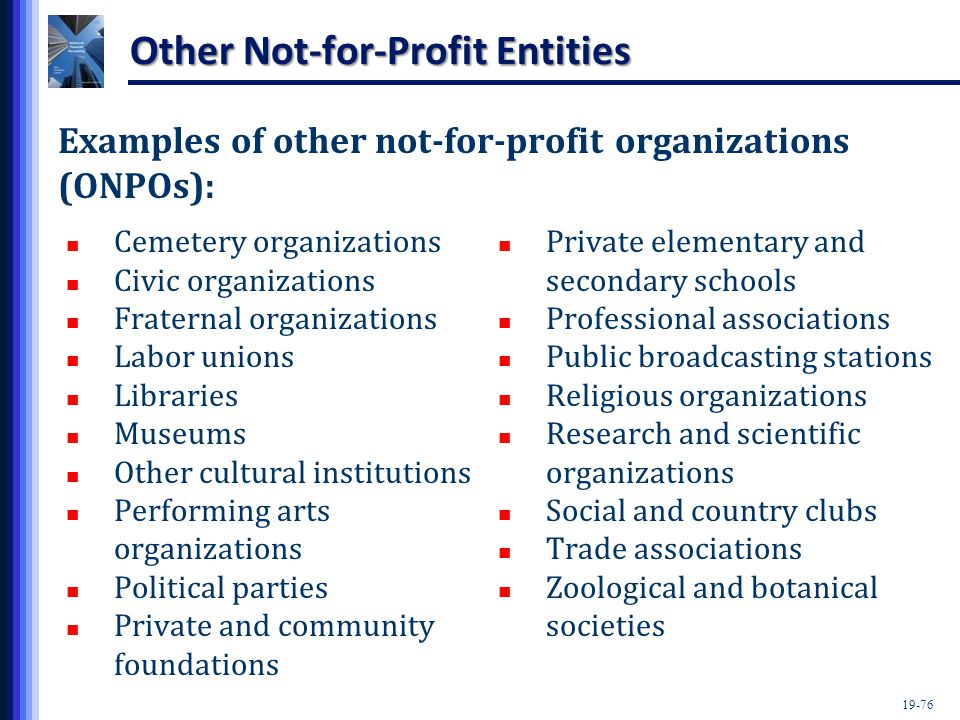19-76 Other Not-for-Profit Entities Examples of other not-for-profit organizations (ONPOs): Private elementary and secondary schools Professional associations Public broadcasting stations Religious organizations Research and scientific organizations Social and country clubs Trade associations Zoological and botanical societies Cemetery organizations Civic organizations Fraternal organizations Labor unions Libraries Museums Other cultural institutions Performing arts organizations Political parties Private and community foundations