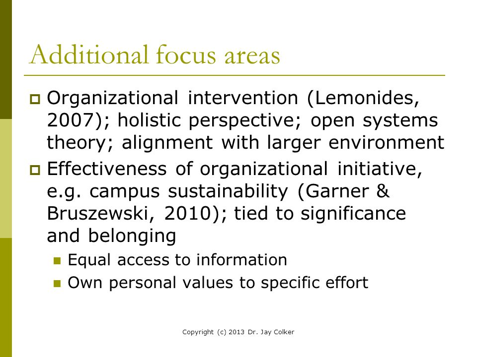 Additional focus areas  Organizational intervention (Lemonides, 2007); holistic perspective; open systems theory; alignment with larger environment 