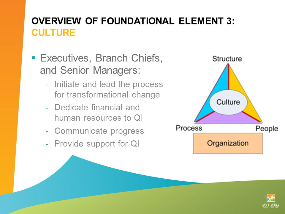 OVERVIEW OF FOUNDATIONAL ELEMENT 3: CULTURE  Executives, Branch Chiefs, and Senior Managers: ˗ Initiate and lead the process for transformational cha