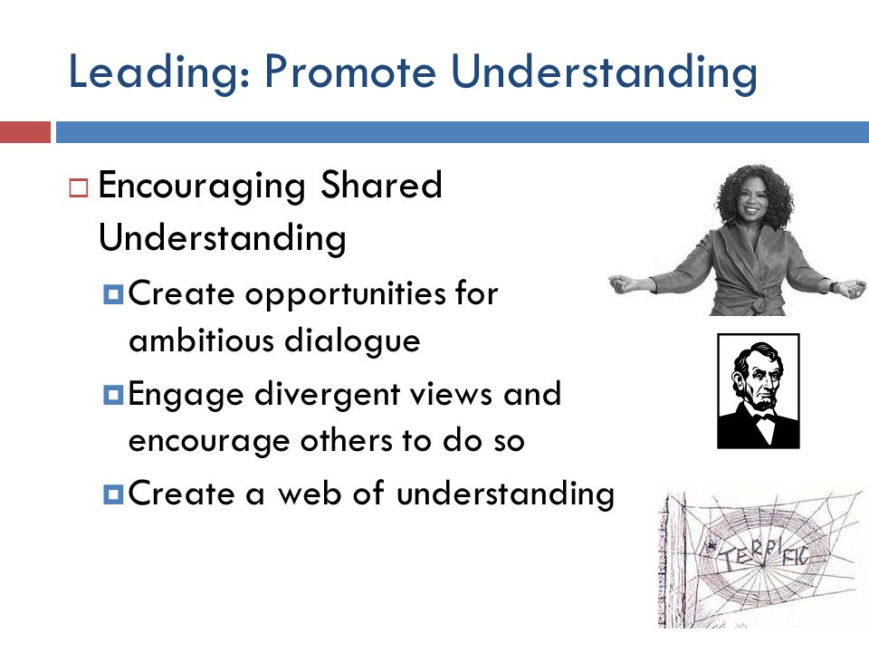 Leading: Promote Understanding  Encouraging Shared Understanding  Create opportunities for ambitious dialogue  Engage divergent views and encourage others to do so  Create a web of understanding