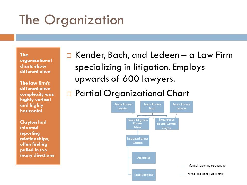 The Organization The organizational charts show differentiation The law firm's differentiation complexity was highly vertical and highly horizontal Cl