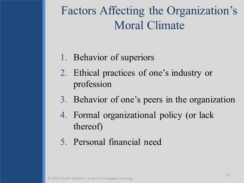 Factors Affecting the Organization's Moral Climate 1.Behavior of superiors 2.Ethical practices of one's industry or profession 3.Behavior of one's pee