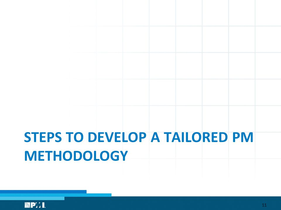 STEPS TO DEVELOP A TAILORED PM METHODOLOGY 11