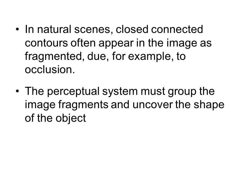 In natural scenes, closed connected contours often appear in the image as fragmented, due, for example, to occlusion. The perceptual system must group