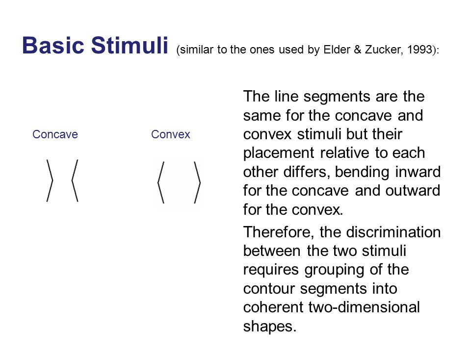 ConcaveConvex Basic Stimuli (similar to the ones used by Elder & Zucker, 1993 ): The line segments are the same for the concave and convex stimuli but their placement relative to each other differs, bending inward for the concave and outward for the convex.