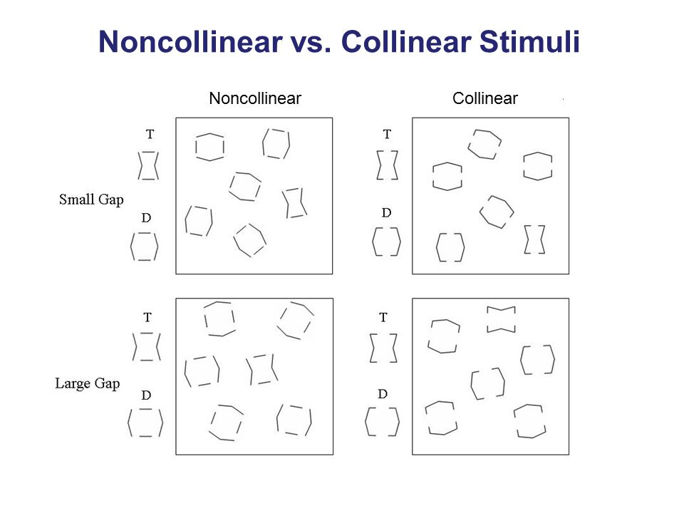 Noncollinear vs. Collinear Stimuli Noncollinear Collinear