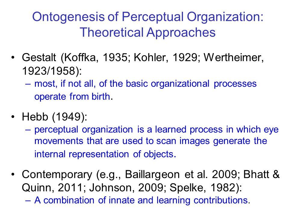 Ontogenesis of Perceptual Organization: Theoretical Approaches Gestalt (Koffka, 1935; Kohler, 1929; Wertheimer, 1923/1958): –most, if not all, of the
