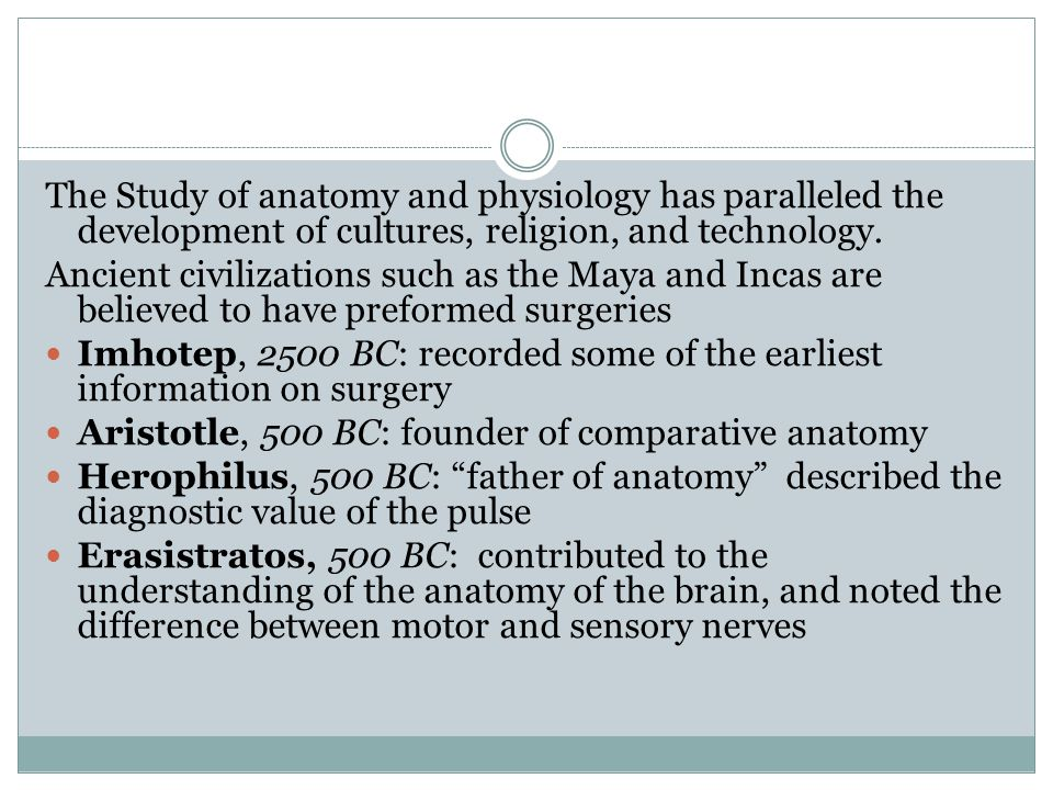 The Study of anatomy and physiology has paralleled the development of cultures, religion, and technology. Ancient civilizations such as the Maya and I