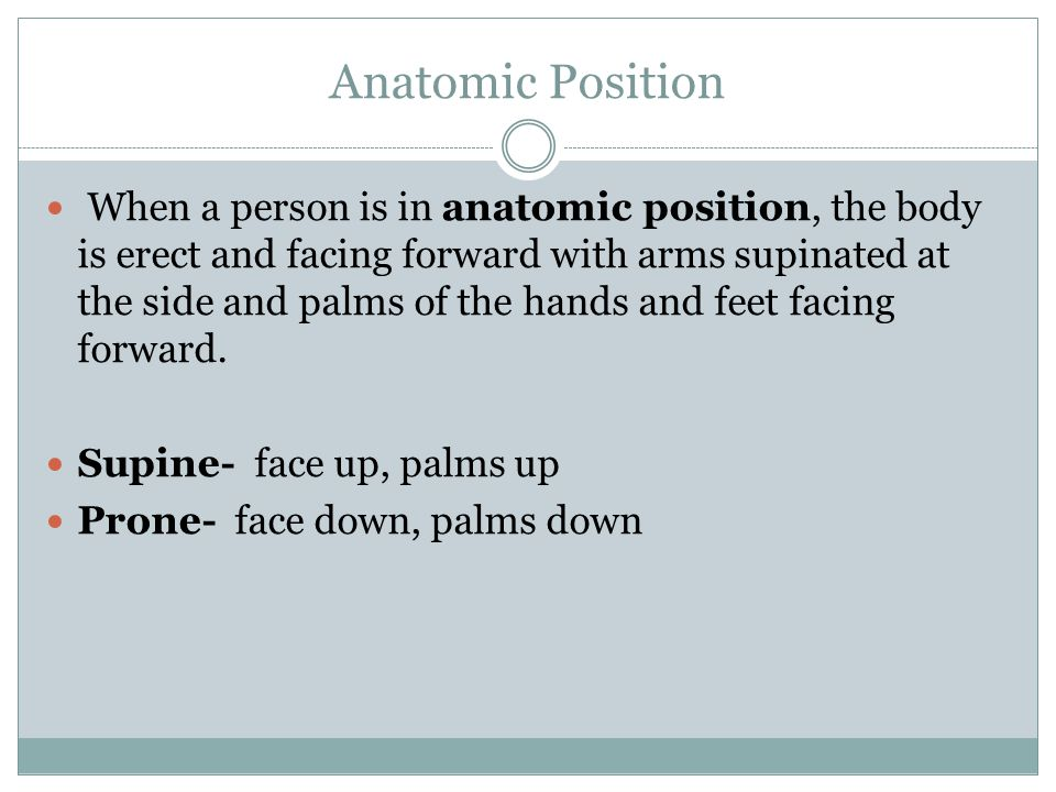 Anatomic Position When a person is in anatomic position, the body is erect and facing forward with arms supinated at the side and palms of the hands and feet facing forward.